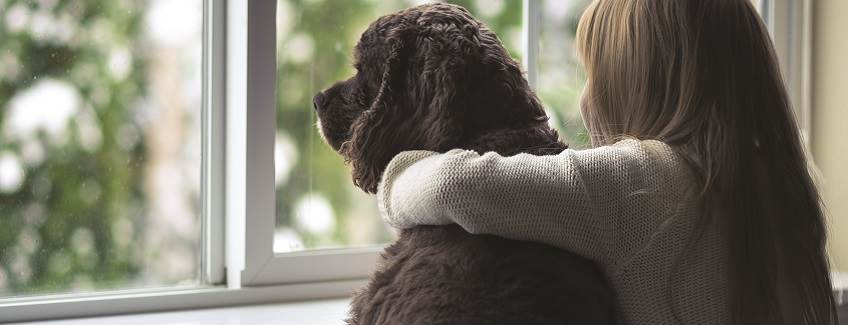Young girl and her dog staring out a window together.